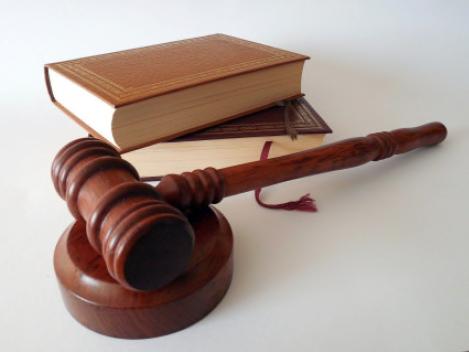 February 2021 Newsletter - Litigation
